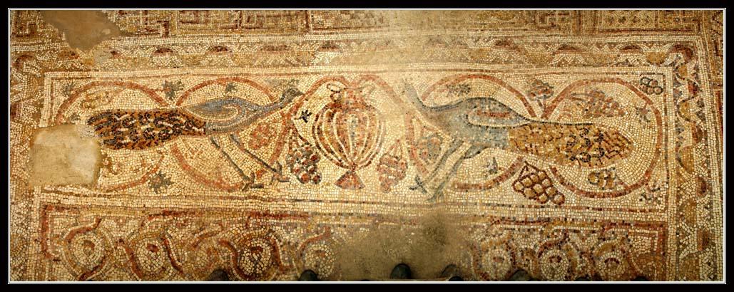 История набатейского города Мамшит - рядом с Димоной