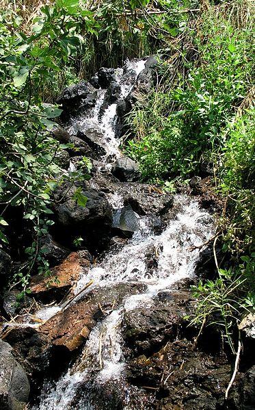 Водный маршрут на севере Израиля - Эйн Тина