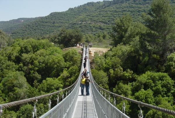 Мосты в Нешере - гора Кармель