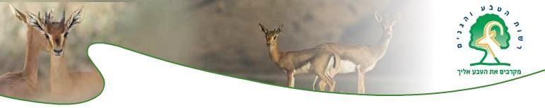 Песах 2017 в Национальных парках и заповедниках Израиля