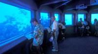 вид внутри подводной обсерватории - мицпе тат ями - эйлат - Израиль