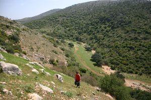 Галилея - склон горы на маршруте - Нахаль Хилазон Элйон