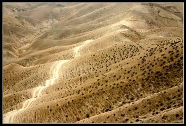 Холмы Иудейской пустыни - Израиль