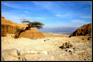 вид на мертвое море - израиль