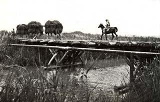 Старый мост через нахаль Александр - Израиль