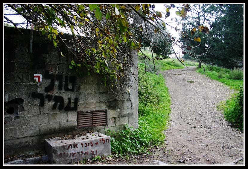 маршрут ручья - кейни - недалеко от Тель Мегидо - армагедон