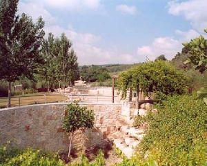 Парк Алона - Мей Кедем