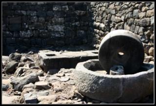 маслодавильный цeх в национальном парке коразм - хоразин