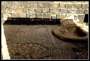 Мозаика в национальном парке Курси