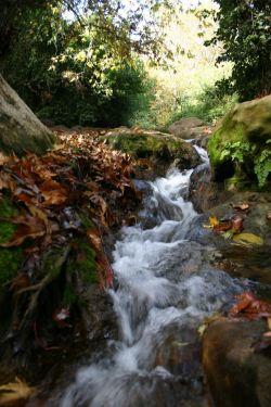 Водопад на Нахаль Амуд