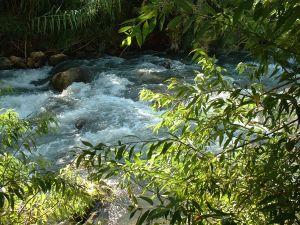 бурное течение воды в нахаль снир