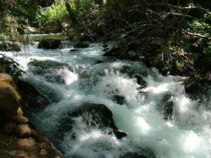 течение воды с водопада баниас